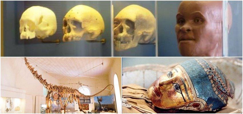 Museu Nacional do Rio: Não foi acidente!