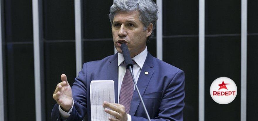 Paulo Teixeira apresenta projeto que regulamenta uso e cultivo da cannabis