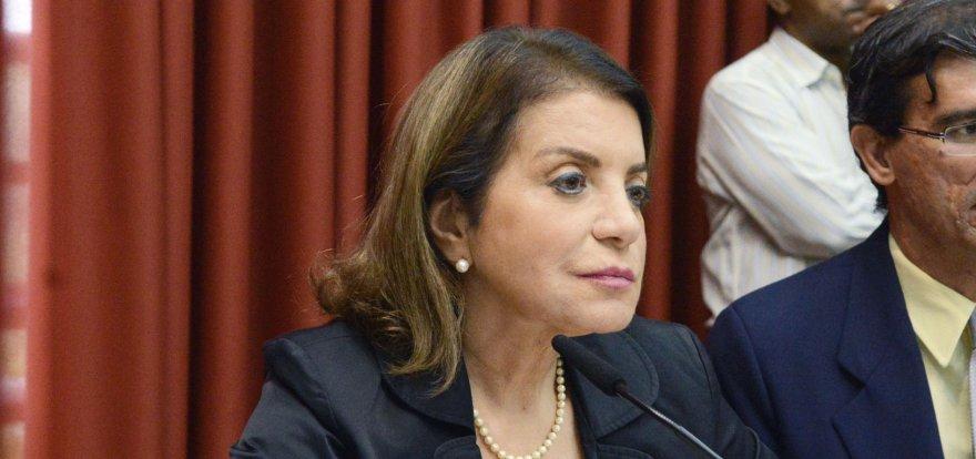 Professora Bebel: Seminário em Ribeirão Preto debate alternativas à reforma da previdência